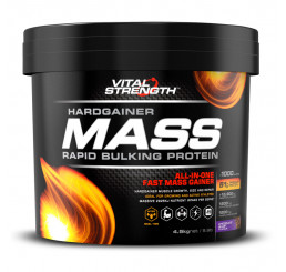 Vital Strength Hardgainer Mass Rapid Bulking Protein