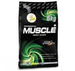 Vital Strength Professional Muscle Advanced Mass Protein